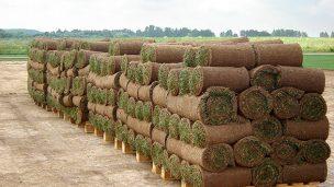 Срезанный рулонный газон на нашем поле