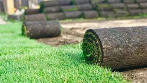 Укладка рулонного газона на загородном участке клиента