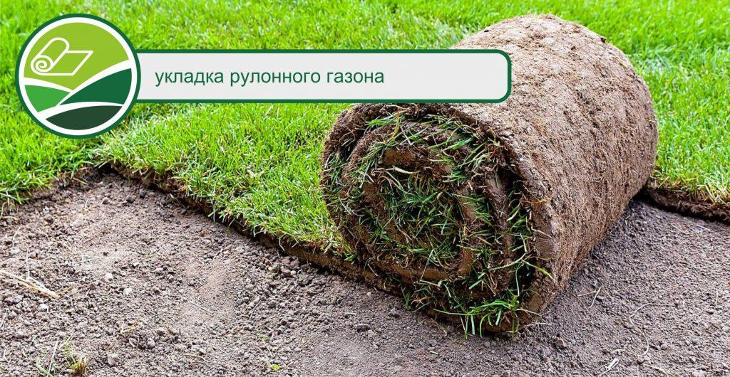 уклада рулонного газона