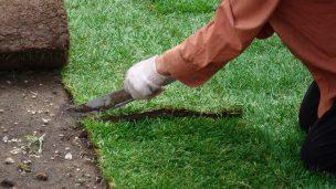 Подрезка рулонного газона
