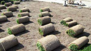 Подготовка территории к укладке газона